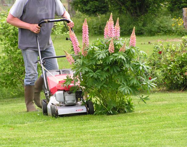 formule-travaux-jardinage-2